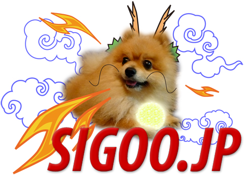 dragon sigoo